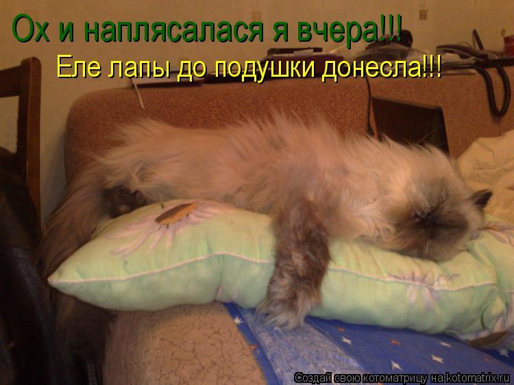 Котоматрица: Ох и наплясалася я вчера!!! Еле лапы до подушки донесла!!!