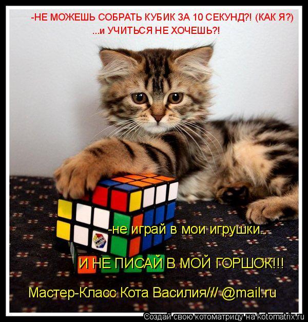 Котоматрица: -не играй в мои игрушки.. И НЕ ПИСАЙ В МОЙ ГОРШОК!!! Мастер-Класс Кота Василия/// @mail.ru -НЕ МОЖЕШЬ СОБРАТЬ КУБИК ЗА 10 СЕКУНД?! (КАК Я?) ...и УЧИТЬ