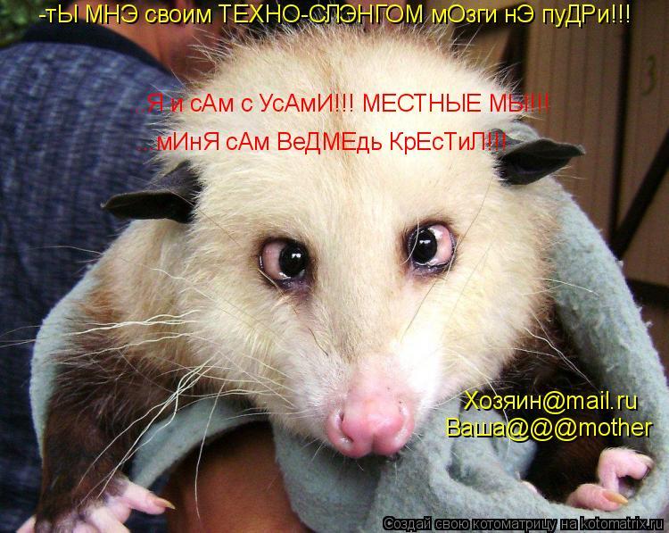 Котоматрица: -тЫ МНЭ своим ТЕХНО-СЛЭНГОМ мОзги нЭ пуДРи!!! ..Я и сАм с УсАмИ!!! МЕСТНЫЕ МЫ!!! ...мИнЯ сАм ВеДМЕдь КрЕсТиЛ!!! Хозяин@mail.ru Ваша@@@mother