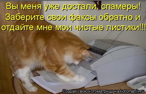 Котоматрица: Вы меня уже достали, спамеры!  Заберите свои факсы обратно и  отдайте мне мои чистые листики!!!