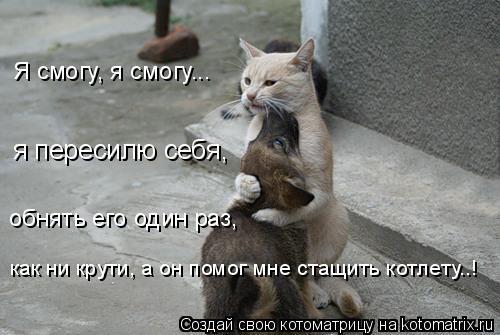 Котоматрица: Я смогу, я смогу... я пересилю себя, обнять его один раз, как ни крути, а он помог мне стащить котлету..!