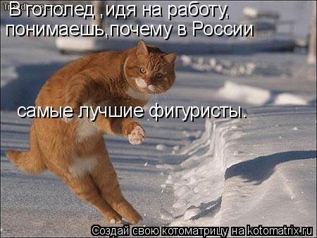 Котоматрица: В гололед ,идя на работу, понимаешь,почему в России самые лучшие фигуристы.