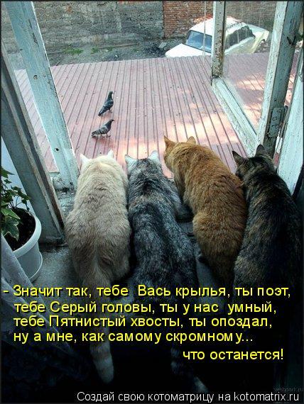 Котоматрица: - Значит так, тебе  Вась крылья, ты поэт,  тебе Серый головы, ты у нас  умный,  тебе Пятнистый хвосты, ты опоздал,  ну а мне, как самому скромному..