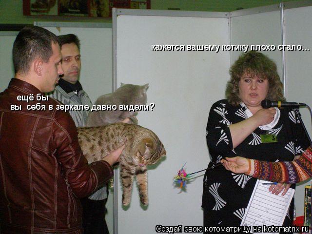Котоматрица: кажется вашему котику плохо стало... ещё бы вы  себя в зеркале давно видели?