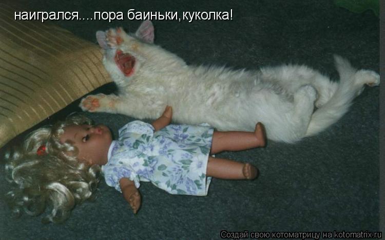 Котоматрица: наигрался....пора баиньки,куколка!