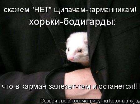 """Котоматрица: скажем """"НЕТ"""" щипачам-карманникам! хорьки-бодигарды: что в карман залезет-там и останется!!!"""