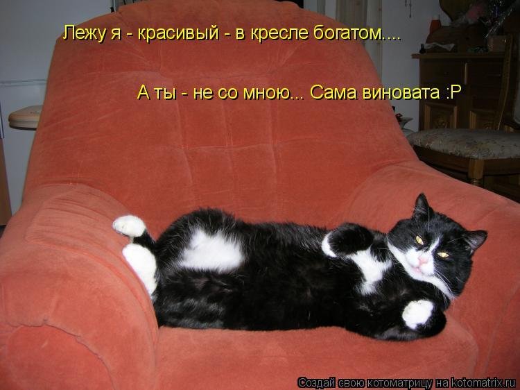 Котоматрица: Лежу я - красивый - в кресле богатом.... А ты - не со мною... Сама виновата :Р