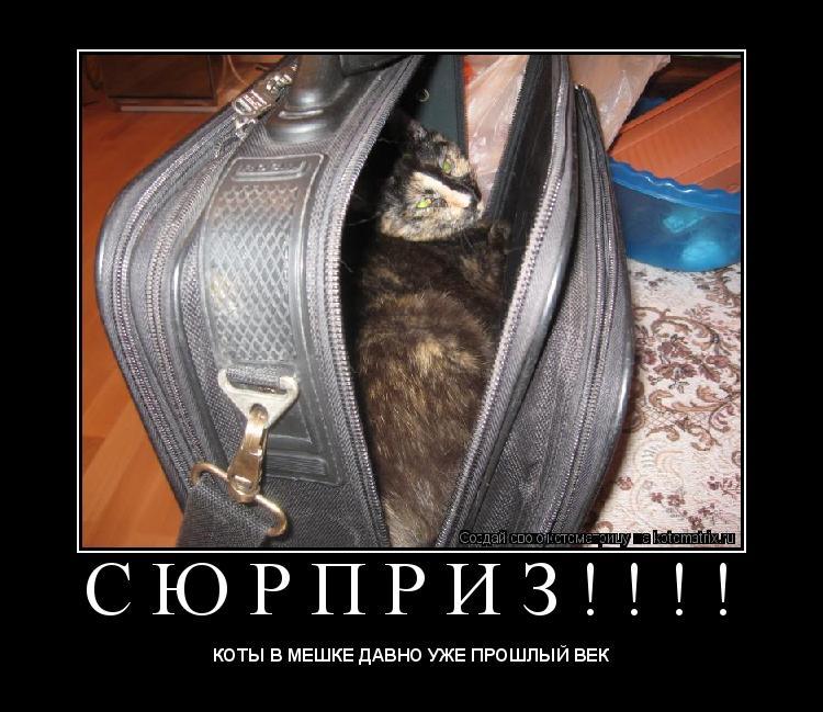 Котоматрица: С Ю Р П Р И З ! ! ! !