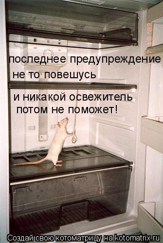 Котоматрица: последнее предупреждение не то повешусь и никакой освежитель  потом не поможет!