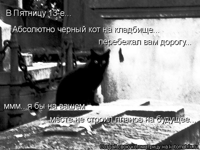 Котоматрица: В Пятницу 13-е... Абсолютно черный кот на кладбище... перебежал вам дорогу... ммм...я бы на вашем  месте не строил планов на будущее...