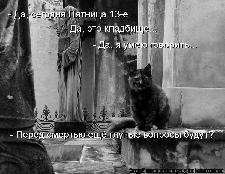 Котоматрица: - Да, сегодня Пятница 13-е... - Да, это кладбище... - Да, я умею говорить... - Перед смертью ещё глупые вопросы будут?