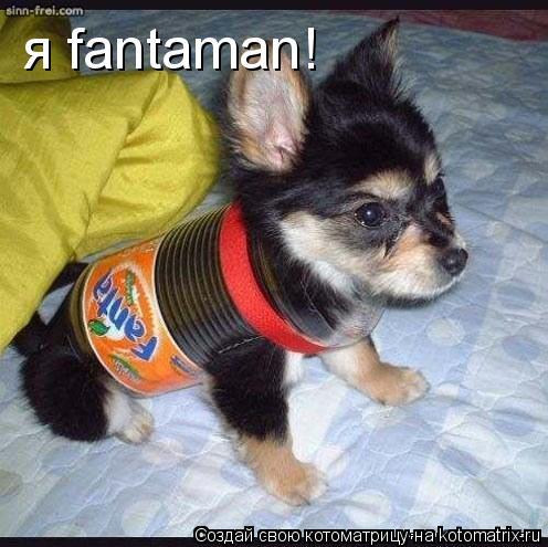 Котоматрица: я fantaman!