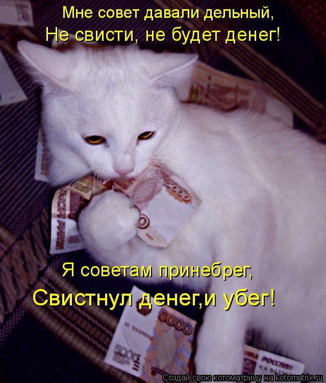 Котоматрица: Мне совет давали дельный, Не свисти, не будет денег! Я советам принебрег, Свистнул денег,и убег!