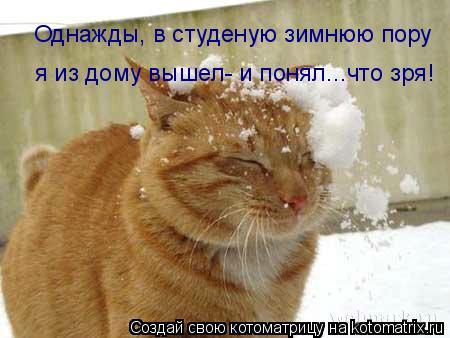 Котоматрица: Однажды, в студеную зимнюю пору я из дому вышел- и понял...что зря!