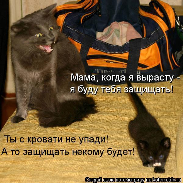 Котоматрица: Мама, когда я вырасту -  я буду тебя защищать! Ты с кровати не упади! А то защищать некому будет!