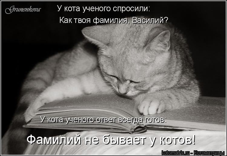 Котоматрица: У кота ученого спросили: Как твоя фамилия, Василий? У кота ученого ответ всегда готов: Фамилий не бывает у котов!