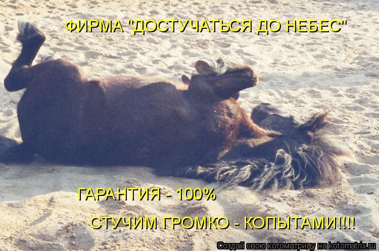 """Котоматрица: ФИРМА """"ДОСТУЧАТЬСЯ ДО НЕБЕС"""" ГАРАНТИЯ - 100% СТУЧИМ ГРОМКО - КОПЫТАМИ!!!!"""