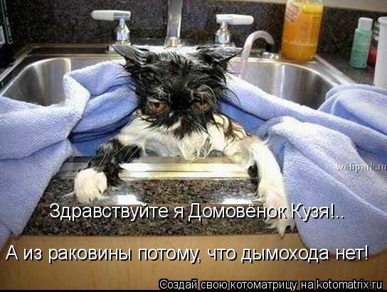 Котоматрица: А из раковины потому, что дымохода нет!  Здравствуйте я Домовёнок Кузя!..