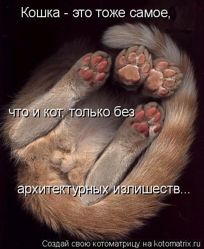 Котоматрица: Кошка - это тоже самое,  что и кот, только без  архитектурных излишеств...