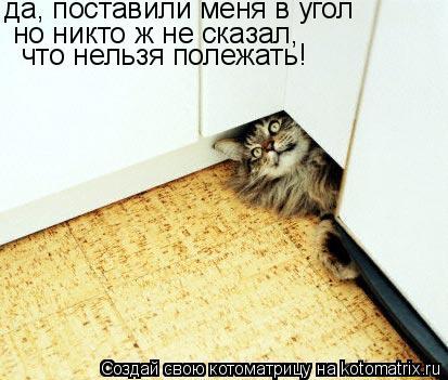 Котоматрица: да, поставили меня в угол  но никто ж не сказал,  что нельзя полежать!