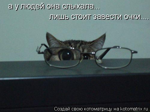 Котоматрица: а у людей она слыхала... лишь стоит завести очки....