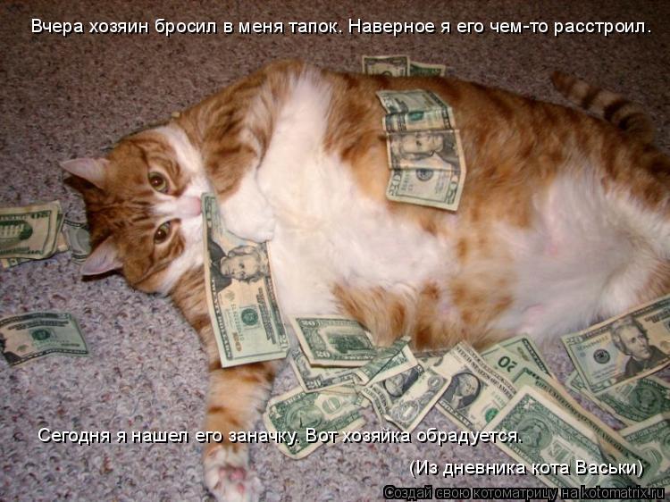 Котоматрица: Вчера хозяин бросил в меня тапок. Наверное я его чем-то расстроил. Сегодня я нашел его заначку. Вот хозяйка обрадуется. (Из дневника кота Вас
