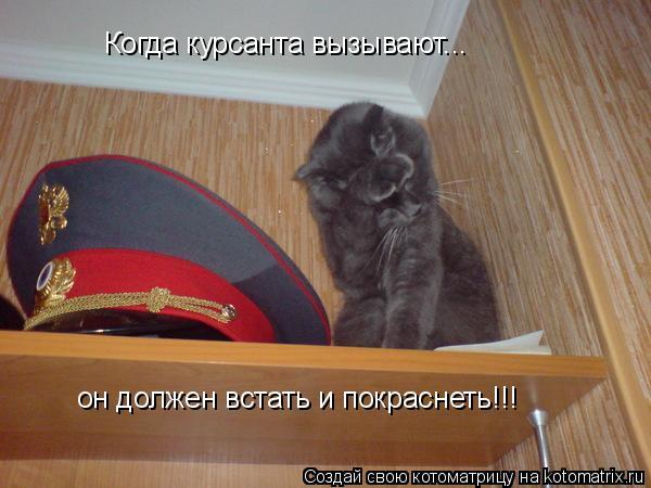 Котоматрица: Когда курсанта вызывают... он должен встать и покраснеть!!!