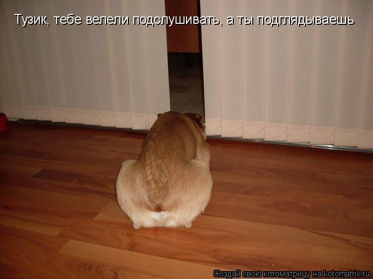 vse-seks-sayti-dlya-skachivaniya