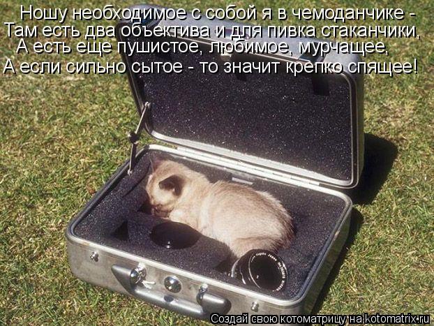 Котоматрица: Ношу необходимое с собой я в чемоданчике -  Там есть два объектива и для пивка стаканчики, А есть еще пушистое, любимое, мурчащее, А если силь