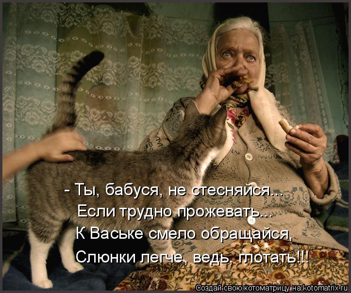 Котоматрица: - Ты, бабуся, не стесняйся... Если трудно прожевать... К Ваське смело обращайся, Слюнки легче, ведь, глотать!!!
