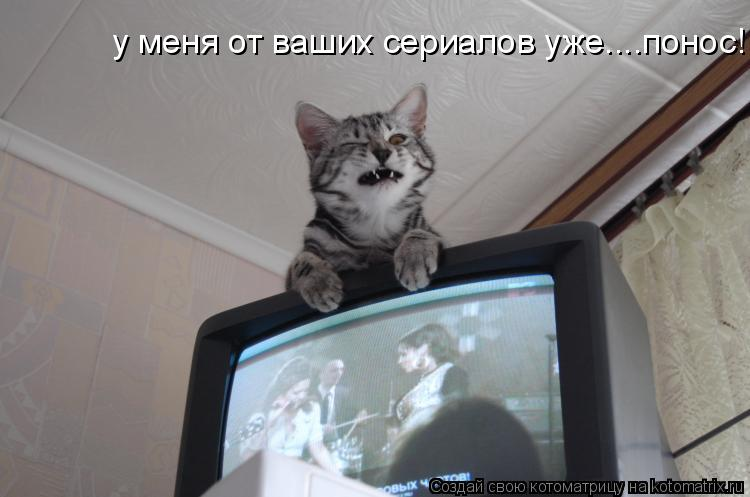 Котоматрица: у меня от ваших сериалов уже....понос!