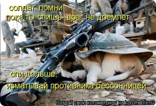 Котоматрица: солдат, помни:  пока ты спишь- враг не дремлет спи дольше,  изматывай противника бессонницей