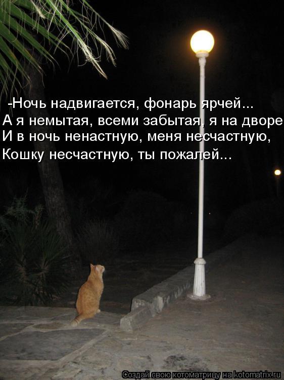 http://kotomatrix.ru/images/lolz/2009/02/20/3C.jpg