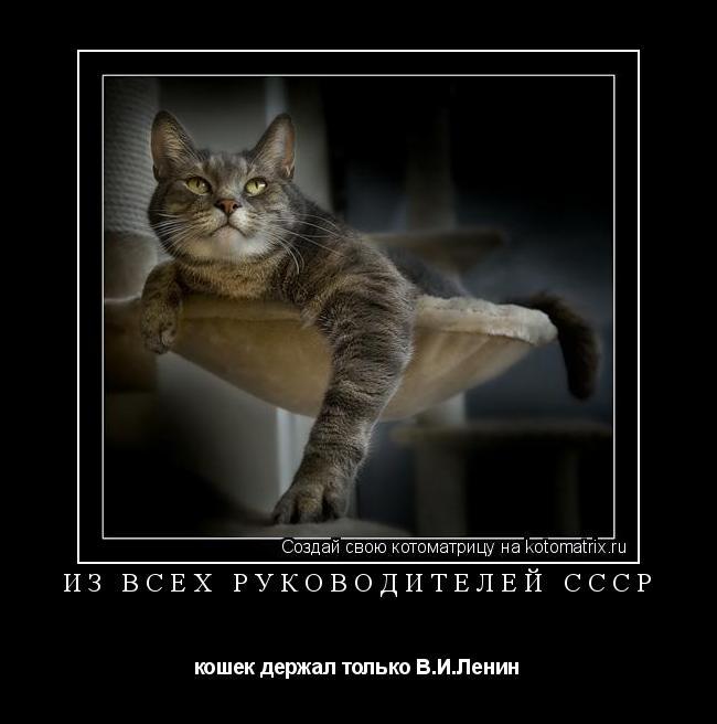 Котоматрица: ИЗ ВСЕХ РУКОВОДИТЕЛЕЙ СССР кошек держал только В.И.Ленин
