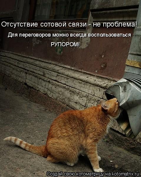 Котоматрица: Отсутствие сотовой связи - не проблема! Для переговоров можно всегда воспользоваться РУПОРОМ!