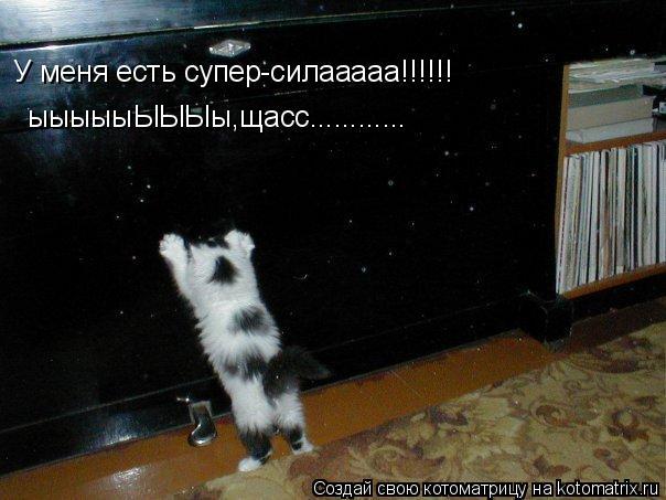 Котоматрица: У меня есть супер-силааааа!!!!!! ыыыыыЫЫЫы,щасс............