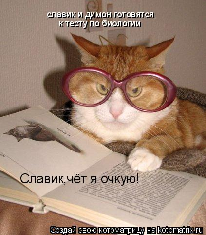 Котоматрица: славик и димон готовятся к тесту по биологии Славик,чёт я очкую!
