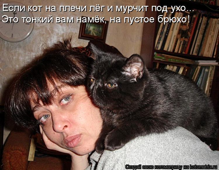 Котоматрица: Если кот на плечи лёг и мурчит под ухо... Это тонкий вам намёк, на пустое брюхо!