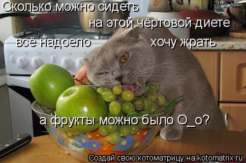 Фото кто сидел на диете