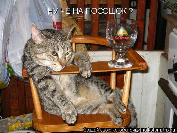 http://kotomatrix.ru/images/lolz/2009/02/21/zC4.jpg