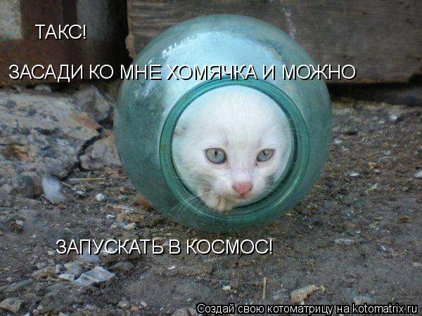 http://kotomatrix.ru/images/lolz/2009/02/22/55.jpg