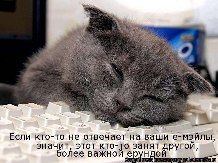 http://kotomatrix.ru/images/lolz/2009/02/22/IQ.jpg