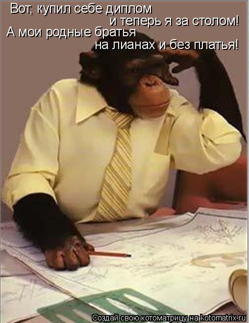 http://kotomatrix.ru/images/lolz/2009/02/22/VD.jpg