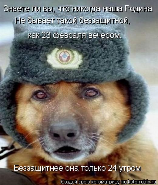 http://kotomatrix.ru/images/lolz/2009/02/23/5X.jpg