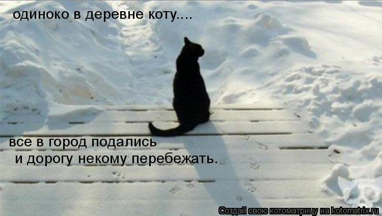 Котоматрица: одиноко в деревне коту.... и дорогу некому перебежать. все в город подались
