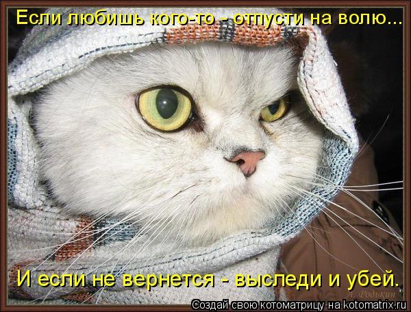 Котоматрица: Если любишь кого-то - отпусти на волю... И если не вернется - выследи и убей.