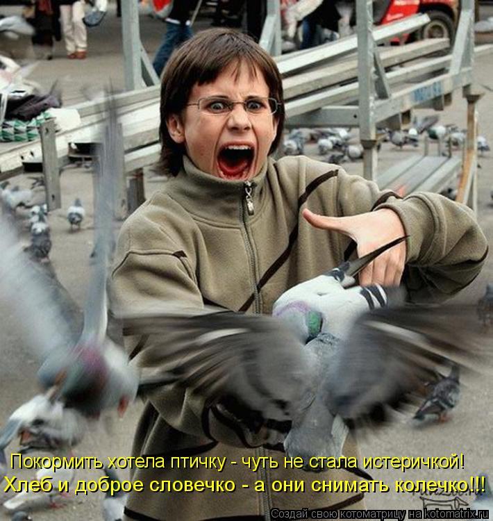 Котоматрица: Покормить хотела птичку - чуть не стала истеричкой! Хлеб и доброе словечко - а они снимать колечко!!!