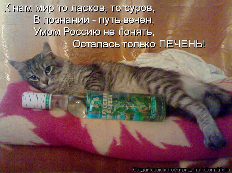 Котоматрица: К нам мир то ласков, то суров,  В познании - путь вечен, Умом Россию не понять,  Осталась только ПЕЧЕНЬ!