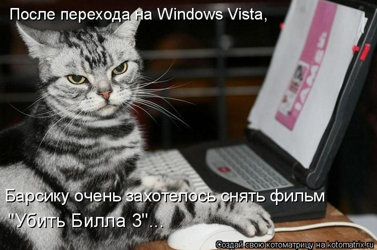 """Котоматрица: После перехода на Windows Vista,  Барсику очень захотелось снять фильм  """"Убить Билла 3""""..."""