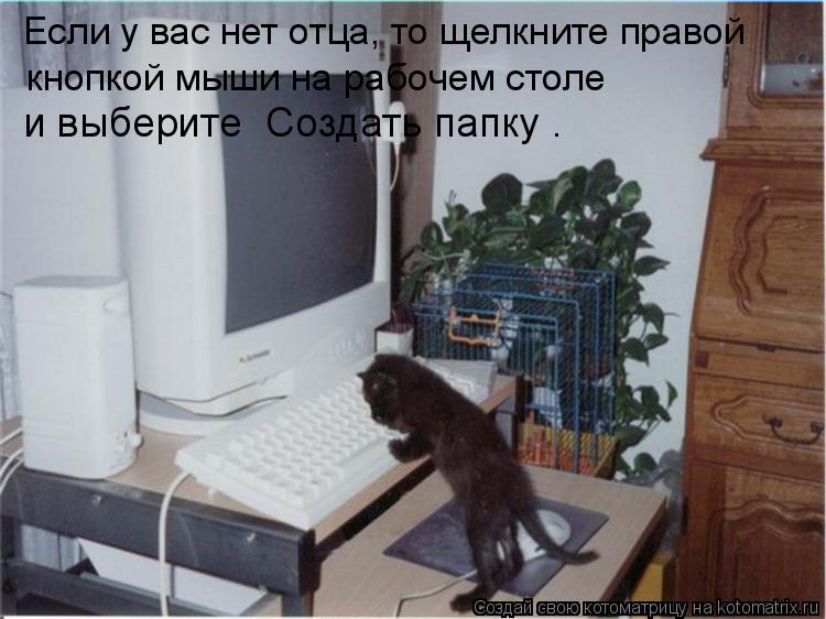 Котоматрица: Если у вас нет отца, то щелкните правой  кнопкой мыши на рабочем столе  и выберите «Создать папку».